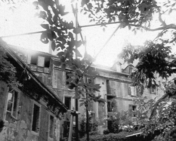 16-cour-et-arbres